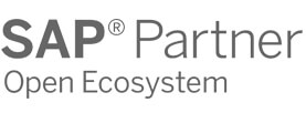 SAP Partner open eccosystem